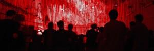 ZNFI-Header-Red